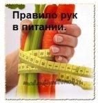 правило руки в питании