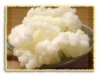 китайский молочный гриб